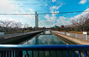 仙台堀川埼川橋で