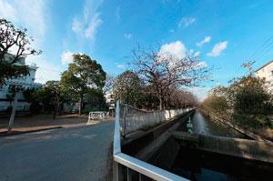 仙台堀川公園暗渠の終点