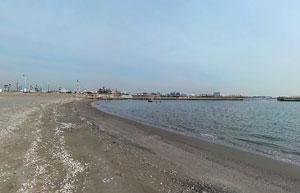 東扇島東公園かわさきの浜