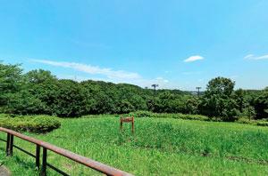 野津田公園展望広場直下