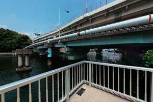 潮見運動公園八枝橋
