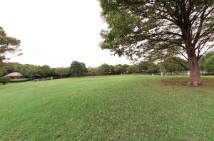 貝取北公園