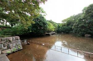 瓜生緑地南の池