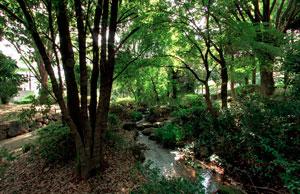 瓜生緑地南側