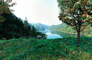 藤原湖を眺める
