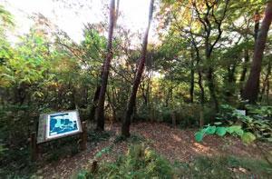 六道山公園あそびの森