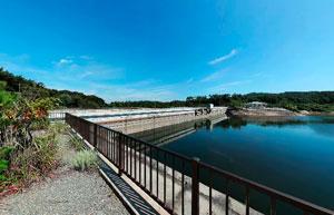 金沢調整池左岸上流