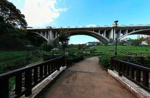 上谷戸大橋下流側