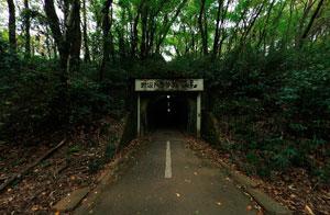 野山北公園自転車道赤坂トンネル