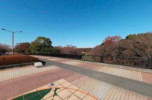 昭和記念公園ふれあい橋