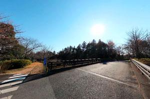 昭和記念公園やまぶき橋