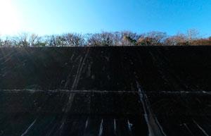 昭和記念公園調整池