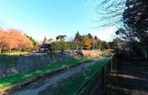 昭和記念公園玉川上水口対岸