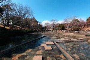 郷土の森博物館水遊びの池