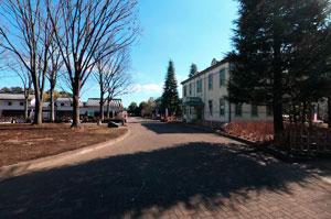 郷土の森博物館旧甲州街道