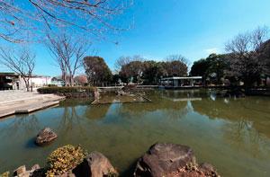 郷土の森公園修景池