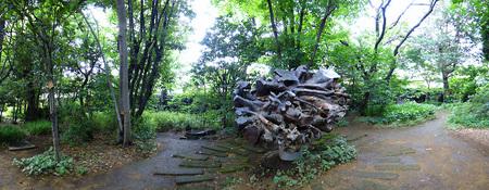 目白の森オブジェ